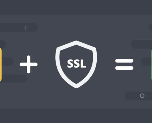ssl https Leeuwarden hosting